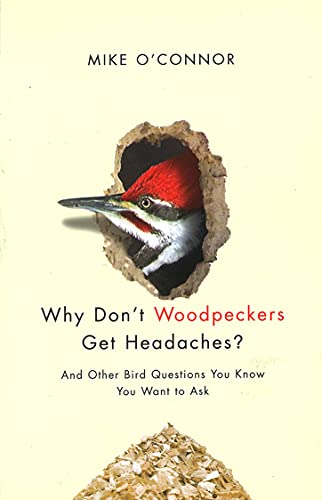 Why Don't Woodpeckers Get Headaches?: And Other Bird Questions You Know You Want to Ask: Mike ...