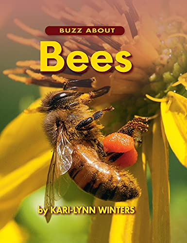 Buzz about Bees: Winters, Kari-Lynn