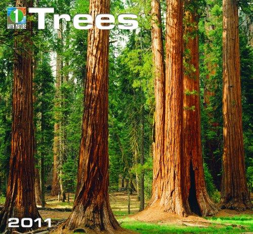 9781554563586: 2011 Trees Calendar