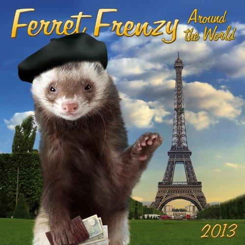 9781554565818: Ferret Frenzy 2013 Calendar