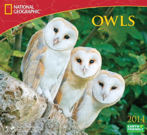 2014 National Geographic Owls Deluxe Wall: Zebra Publishing Corp.