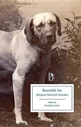 9781554811731: Beautiful Joe (Broadview Editions)
