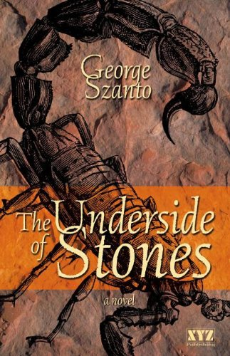 9781554886937: The Underside of Stones