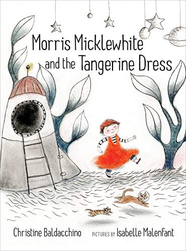 9781554983476: Morris Micklewhite and the Tangerine Dress