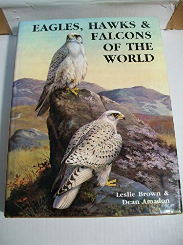 9781555214722: Eagles, Hawks and Falcons of the World