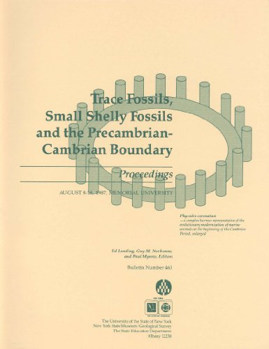 9781555571788: Trace Fossils, Small Shelly Fossils, and the Precambrian-Cambrian Boundary: Proceedings, August 8-18, 1987, Memorial University (Bulletin#463 / New ... Museum) (Bulletin / New York State Museum)