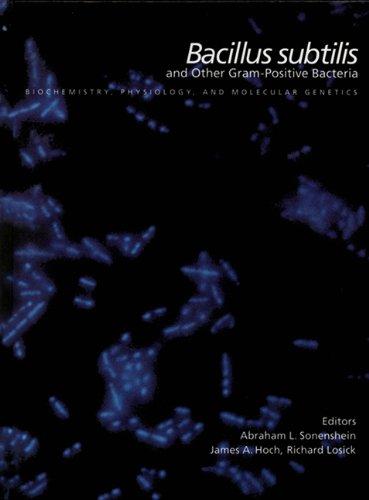 Bacillus Subtilis and Other Gram-Positive Bacteria: Biochemistry,: Abraham L. Sonenshein~James