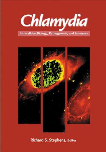 9781555811556: Chlamydia: Intracellular Biology, Pathogenesis, And Immunity (Hb)