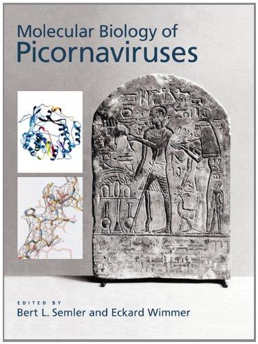 The Molecular Biology of Picornavirus (Hardback): Bert L. Semler, Eckard Wimmer