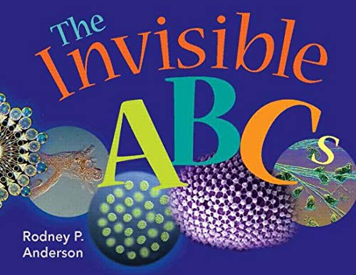 9781555813864: The Invisible ABCs