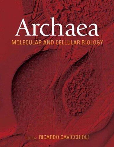 9781555813918: Archaea