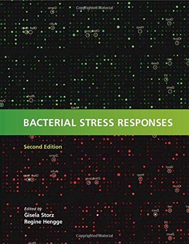 9781555816216: Bacterial Stress Responses