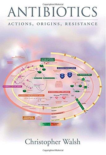 9781555818937: Antibiotics: Actions, Origins, Resistance