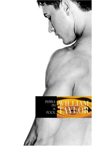 9781555837358: Pebble in a Pool: A Novel