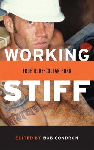 9781555839499: Working Stiff: True Blue-Collar Gay Porn