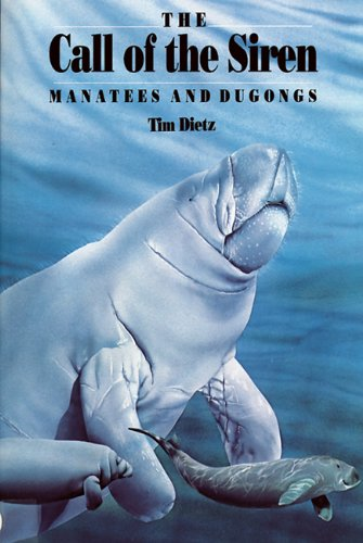Call of the Siren : Manatees and Dugongs