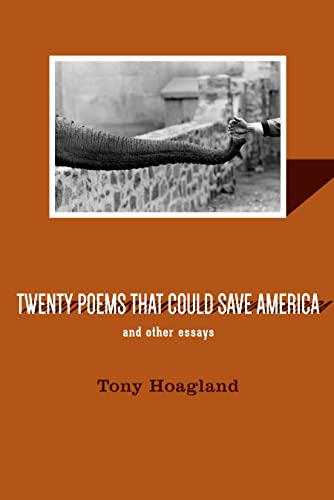 9781555976941: Twenty Poems That Could Save America and Other Essays