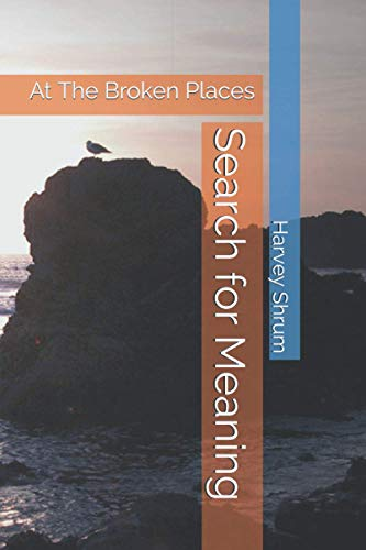 9781556054297: Search For Meaning at the Broken Places