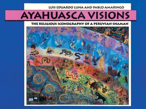9781556430640: Ayahuasca Visions: The Religious Iconography of a Peruvian Shaman