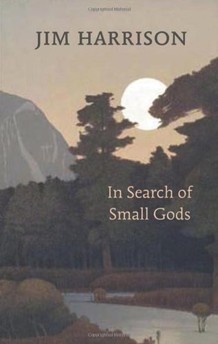 9781556593000: In Search of Small Gods