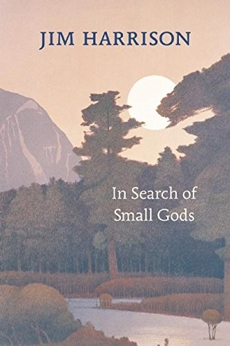 9781556593192: In Search of Small Gods