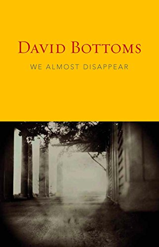 We Almost Disappear (1556593317) by Bottoms, David