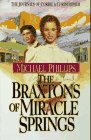 9781556616358: The Braxtons of Miracle Springs (Book 1)