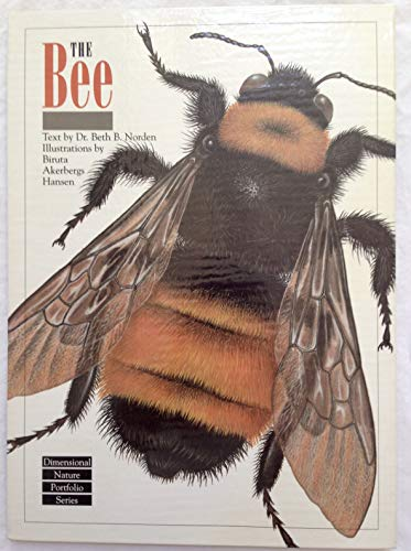 9781556702181: The Bee (Dimensional Nature Portfolio Series)