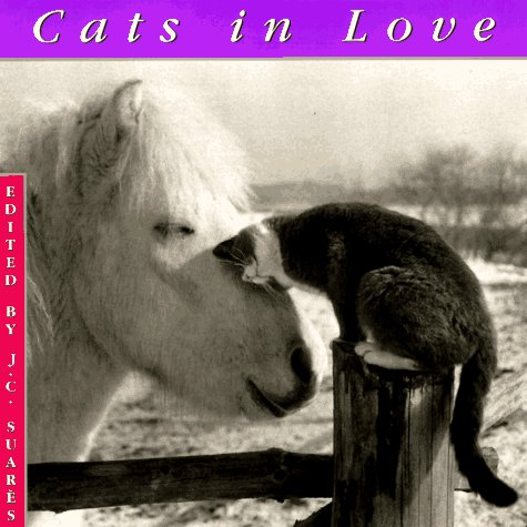 9781556705076: Cats In Love