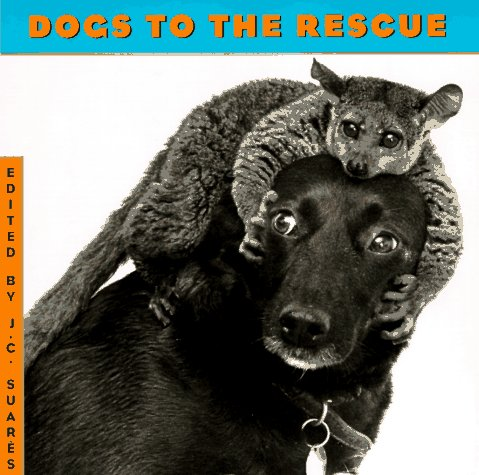 9781556705083: Dogs to the Rescue