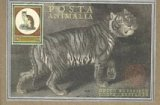 9781556705267: Posta Animalia - Postcard Book