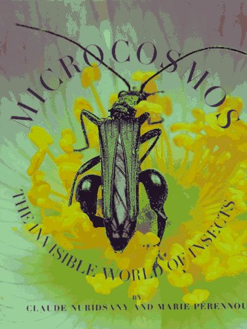 9781556705557: Microcosmos: The Invisible World of Insects