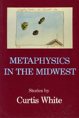 Metaphysics In The Midwest (American Fiction) (1557130442) by White, Curtis