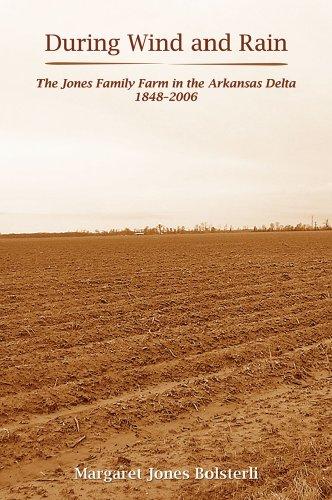 During Wind and Rain : The Jones: Margaret Jones Bolsterli