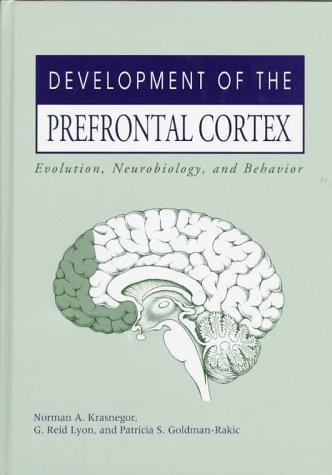 9781557662750: Development of the Prefrontal Cortex: Evolution, Neurobiology, and Behavior