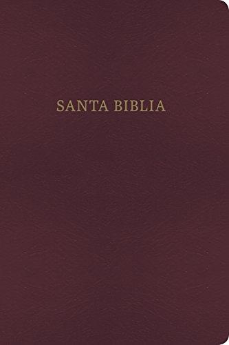 9781558190313: RVR 1960/KJV Biblia Bilingue, borgoña imitacion piel (Spanish Edition)