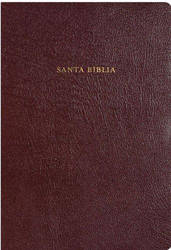 9781558195608: RVR 1960 Biblia de Estudio Arco Iris, borgoña piel fabricada con índice (Spanish Edition)