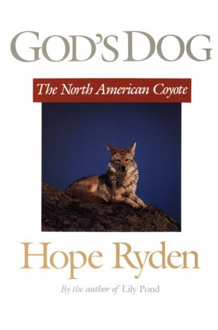 9781558210462: God's Dog: The North American Coyote
