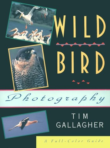 9781558213104: Wild Bird Photography