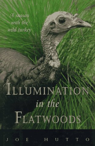 9781558213906: Illumination in the Flatwoods: A Season With the Wild Turkey