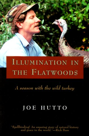 9781558216945: Illumination in the Flatwoods: A Season With the Wild Turkey