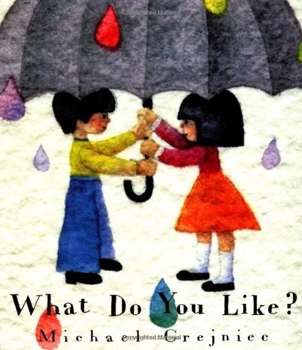9781558584174: What Do You Like? (North-south Paperback)