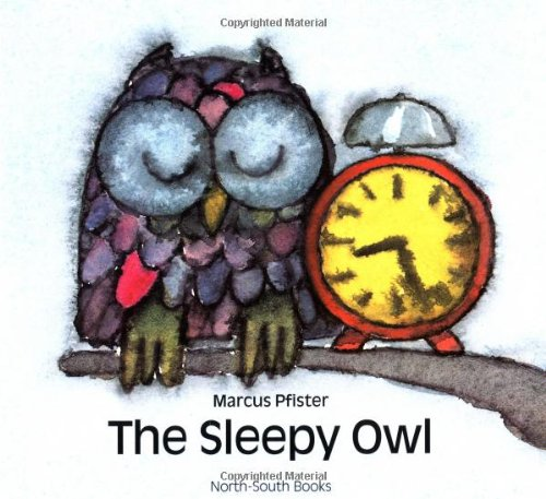9781558589056: Sleepy Owl, The (North-South Paperback)