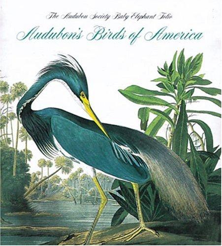 9781558592254: Audubon's Birds of America (Tiny Folios)