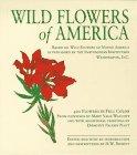 Wildflowers of America (Tiny Folio): Walcott, Mary Vaux