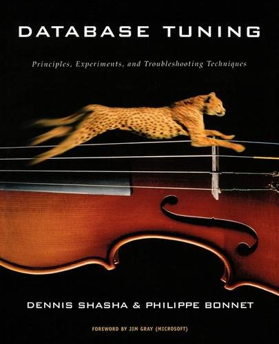 Database Tuning: Principles, Experiments, and Troubleshooting Techniques (The Morgan Kaufmann ...