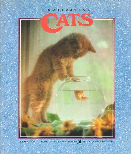 9781559121507: Captivating Cats
