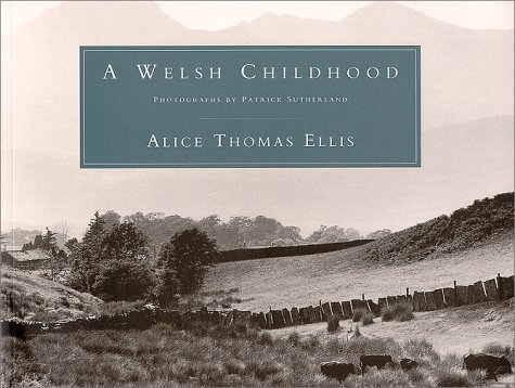 9781559212830: A Welsh Childhood