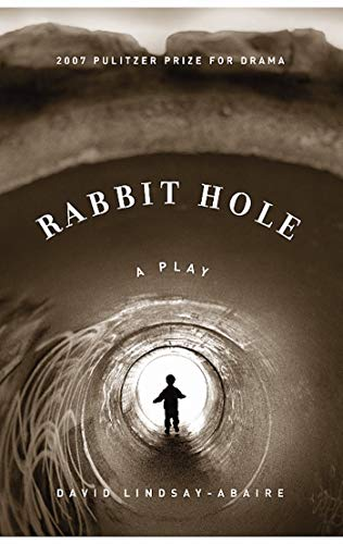9781559362900: Rabbit Hole