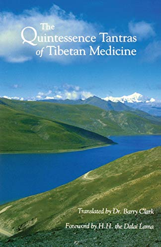 9781559390095: The Quintessence Tantras of Tibetan Medicine